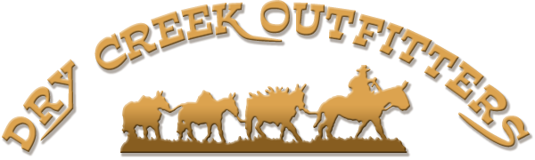 Dry Creek Outfitters Logo